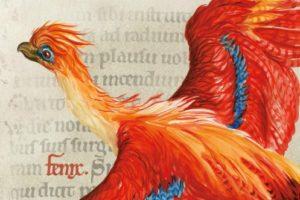 「ハリー・ポッターと魔法の歴史」展が開催!期間や場所、イギリス・大英図書館&アメリカでの様子も紹介