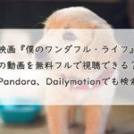 映画『僕のワンダフル・ライフ』の動画を無料フルで視聴できる?Pandora、Dailymotionでも検索