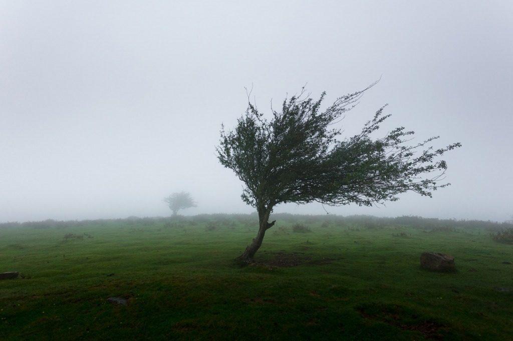 風の強さによる災害の規模