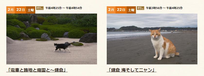 画像出典:https://www4.nhk.or.jp/nekoaruki/