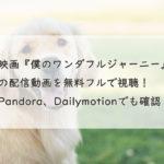 映画『僕のワンダフルジャーニー』の配信動画を無料フルで視聴!Youtube、Pandora、Dailymotion